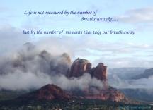 Breaths we Take
