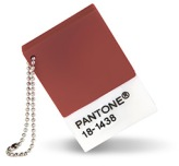 Pantone_Color_of_the_Year_Marsala_ChipDrive